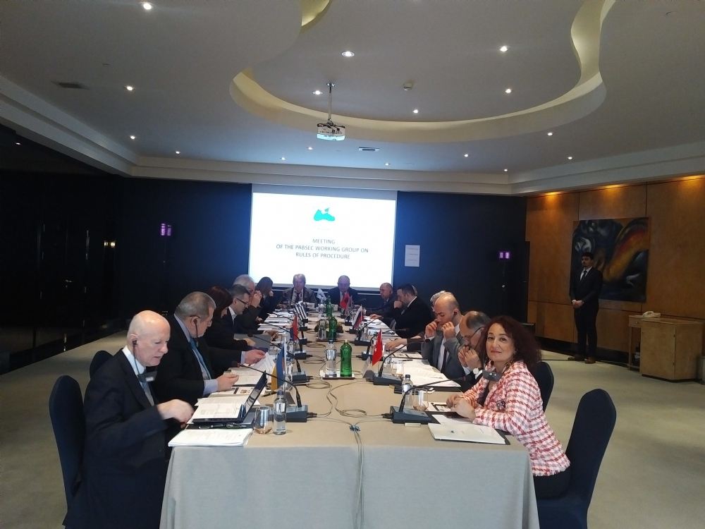 The First 2019 Meeting of the Working Group on the PABSEC Rules of Procedure, Istanbul, 6 March 2019