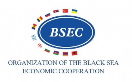 Participation of the PABSEC International Secretariat in the BSEC Working Group on Transport, 23 November 2020