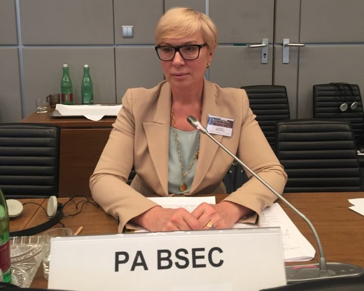 The Head of the Ukrainian PABSEC delegation Mrs. Lyudmila Denisova addressed the 16th OSCE Conference on Combating Trafficking in Human Beings, Vienna, 12 April 2016